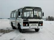 Автобус ПАЗ в аренду,  заказ автобусов ПАЗ в Перми и Пермском крае