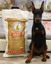 Несомненно актуальный корм для собак без крахмала и аллергенов